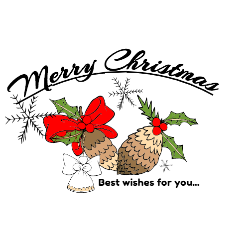 merry christmas best wishes for you