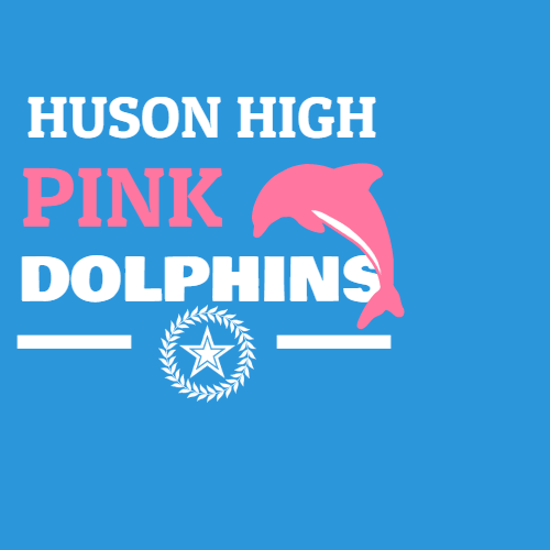 huson high pink dolphins