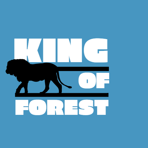 lion of forest