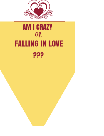 am i crazy or falling in love